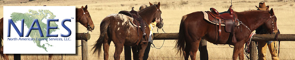 Certified Equine Appraisals from NAES