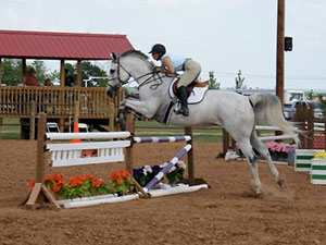Horse of the month for August 2014